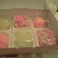 初めての和菓子教室