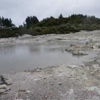 NZ旅日記  その8  地熱地帯散策