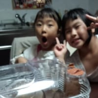 愛莉6歳の誕生日