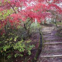 2014年11月10日 三石山 下見
