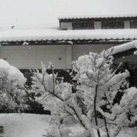 いきなり大雪警報