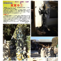 花巡り 「梅-182」 東覚寺①