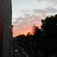 オレンジ色に輝く朝の空