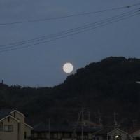 ちょっと渋めの朝ごはんと今日のオット弁♪ 沈む月