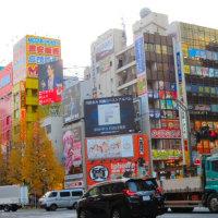 日本旅行2016*メイドカフェ*