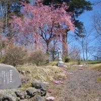 4/28(金)のPACニュース~追分&軽井沢周辺の情報