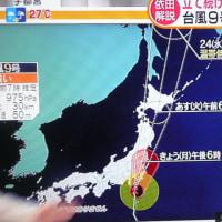 台風9号関東上陸