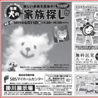6/11(日)譲渡会です☆
