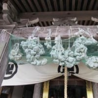 東光寺で「大日ったん」-牛のわらじ