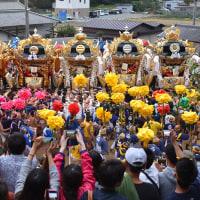 荒川神社 (小芋祭り) 本宮 (姫路市井ノ口) 2016.10.16