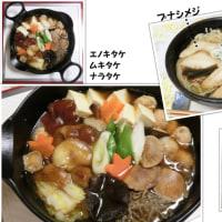 キノコ採り…キノコ鍋と会長さん (*^^)v