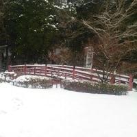 冠嶽神社の雪景色、鹿児島県いちき串木野市