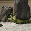 第163回古都旅歩き 大徳寺、今宮神社