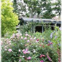 まるで天国 ♪ 夢のように美しい塚原さんのお庭♪