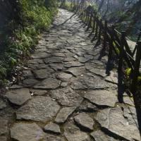 【講習】多摩/滝山丘陵