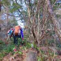 13 長者山山系(510m:安芸区・安佐北区)登山  人通りの少ない登山路か