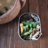 ゴボウオイル煮サラダ弁当