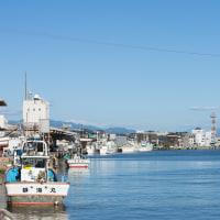 初夏、港の風景