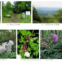 草花を撮る・北から南へ_5(3) -東北地方・北部の山-