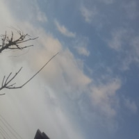 仙台の空2月22日、水曜日