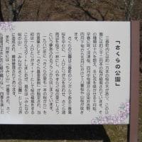 福島県田村郡三春町:JCG#07012G:ZA-0382
