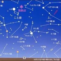 こと座流星群&ふき・アスパラガス
