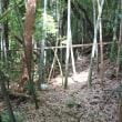 流山市営「日本庭園」でボランティア活動