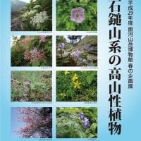 2017春の企画展「石鎚山系の高山性植物」4/22~