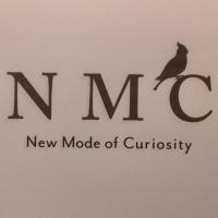 new mode of curiosity