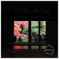 京都 2016 秋 11