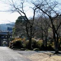 神川町 金鑚元山大師 (大光普照寺)