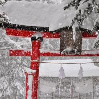 一人でも多くの日本人に知らせたい 川口ユディ女史の言葉 更新