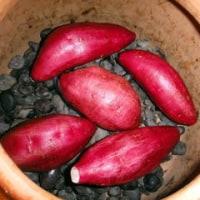 石焼き芋とメダカ