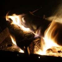 焚き火5(ヨシ)