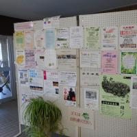 軽井沢のいろいろ 軽井沢の趣味の会