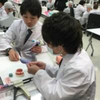 歯科材料企業を見学実習★(株式会社ジーシー様)