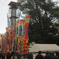大相撲初場所は、ベルバラの懸賞幕、二本