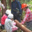 子供達に森林と触れ合う機会を