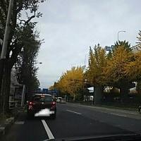 名古屋も寒空