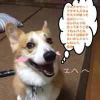 ★バニーボーイばんび★