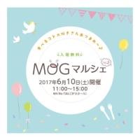 今週の予定です☆ 6/10 MOGマルシェ~