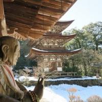 西明寺と多賀大社