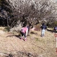 2月11日 活動報告 ②