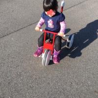 久しぶりの三輪車