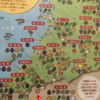 タウンページ大阪泉州南部版最新号