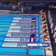 「世界水泳選手権2017ブダペスト」試合結果(7/27)
