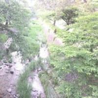 5/28  ∮犬小屋に蚊除けの網戸づくりを張る∮ 長男家族が夕方来る