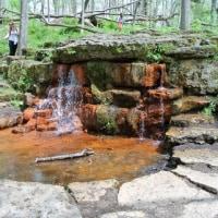 滝を見に行った・Glen Helen自然保護区