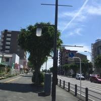 ウクレレサークル練習日→散歩