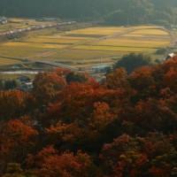 さぼり1715日目 ドタキャン祭り